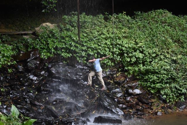 Crystal Showers Falls – Dorrigo National Park