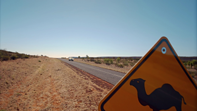 A road sign in the Australian desert warning of camels.