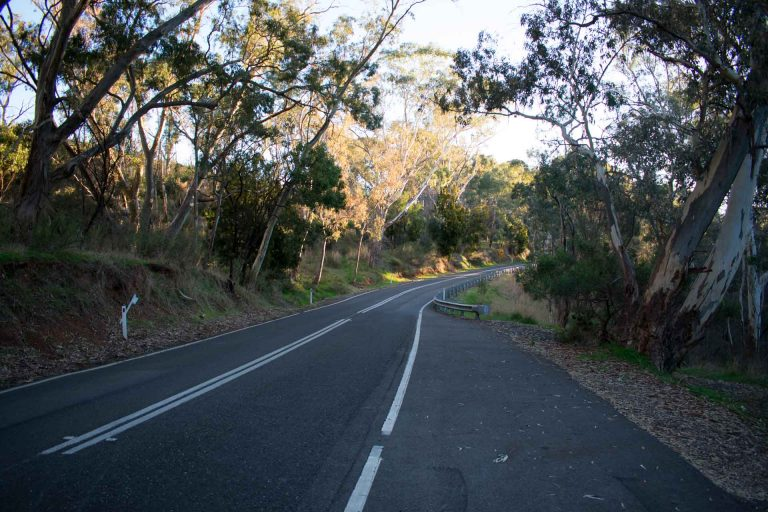 Quirky Things About Gorge Road